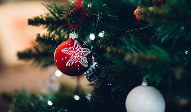 Årets julvärd, Lotta Lundgren, Erik Haag