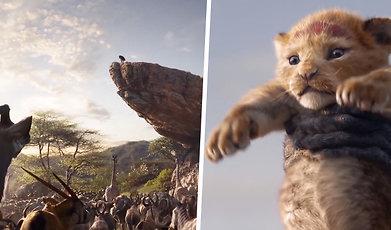 Lejonkungen, Disney