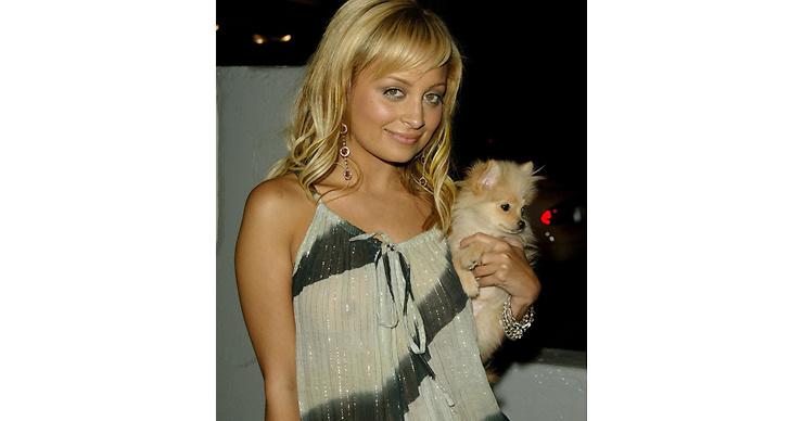 8. Hunden var den trendigaste accessoaren.